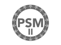 Professional Scrum Master II Training